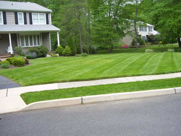 Lawn Care Services - Surrey, Langley