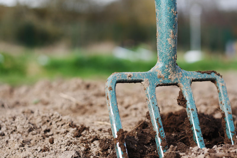 Gardening Tip: Double Digging