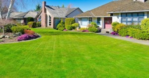 grass-cutting-white-rock-bc