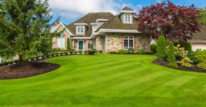 lawn-cutting-langley-bc